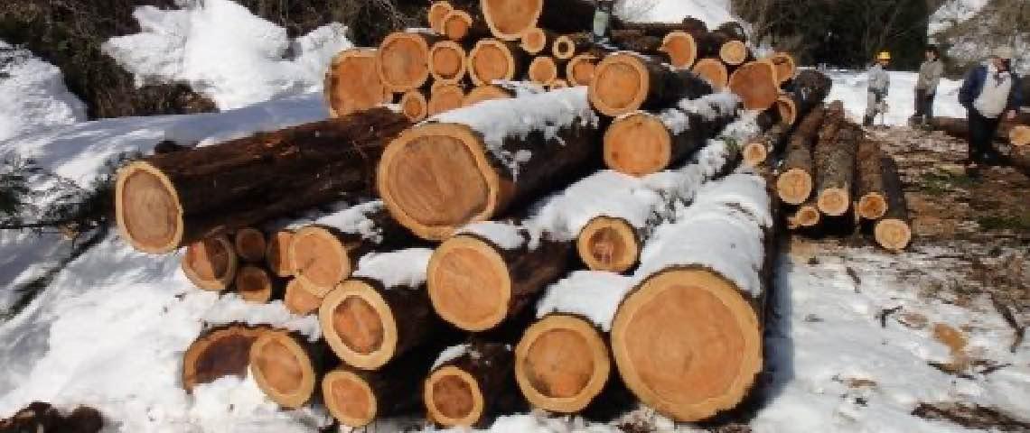 木材の乾燥方法の違い。